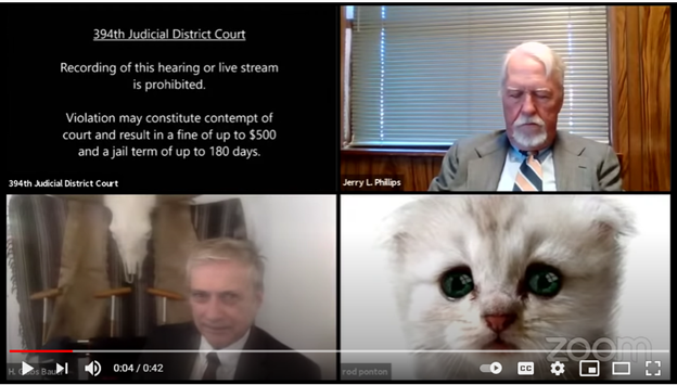 Screenshot of zoom call with an attorney with a cat filter